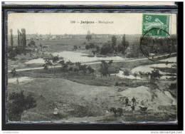 45 - JARGEAU - MADACASCAR - CHEVAL DE TRAIT - Jargeau