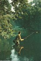 Pêche Sur Le Loiret. - Pêche