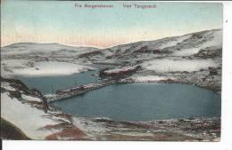 NORVEGE - FRA BERGENSBANEN - VED TAUGEVAND - Norvège