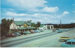 Irish Hills MI Michigan, Horns Roadside Restaurant, Autos, C1950s Vintage Postcard - United States