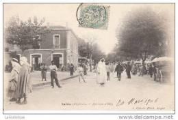 ALGERIE - SAÏDA / AVENUE D´ISLY - Saida