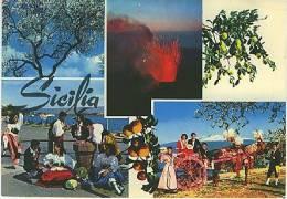 SICILIA CARRETTO SICILIANO CARRO SICILIANO - SALUTI - Italia
