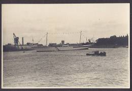 Italy Photo Boats In Harbour (2 Scans) - Schiffe