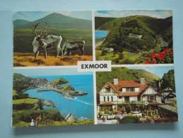22527 PC: DEVON: Exmoor. - Inglaterra