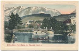 Ortsbrücke Payerbach M. Raxalpe, 2009 M -- Alleinverlag Louise Pokorny, 1908 - Autriche