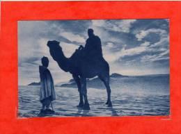 MISSIONS AFRICAINES Coucher De Soleil Au Sahara - Sahara Occidental