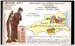 66 - EMULSION SCOTT - France