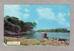 31030   Trinidad &  Tobago,  Ortoire  River,  NV - Trinidad