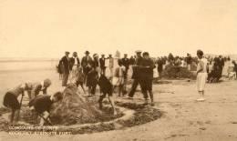 Belgique - Nieuport Bains- Concours De Forts- Voor Het Sterkste Fort (chateaux De Sable) - Nieuwpoort