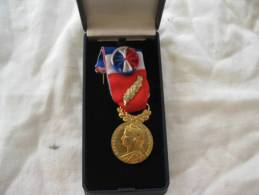 Medaille Du Travail Or 35 Ans Avec Nom Gravé Dans Son Boitier - France