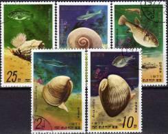 WWF Schnecken Fische Natica Fortunel 1977 Korea 1668/2 O 2€ Meerestier Arca Inflata Rapana Animals Fishes Set Of Corea - Korea (...-1945)