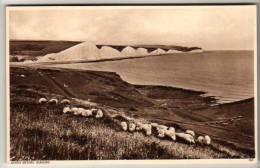 Sussex - Seaford, Seven Sisters - Postcard - Hastings