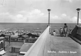 PALOMBINA - Ancona