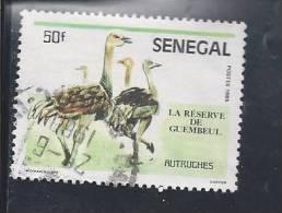 YT Senegal 1986-03 -  N° 675 - Autruches.jpg - Sénégal (1960-...)