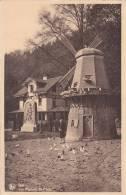 Spa, Windmühle Als Taubenhaus Im Park, Um 1945 - Molinos De Viento
