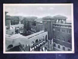 LAZIO -FROSINONE -ANAGNI -F.G. LOTTO N°189 - Frosinone