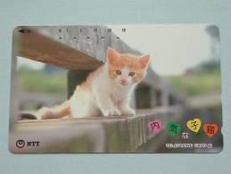CHAT / CAT / KAT / POES ( NTT Japan ) ! - Chats