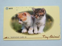 CHAT / CAT / KAT / POES ( NTT Japan ) ! - Cats