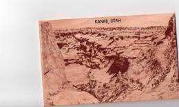 Cpm USA En Bois, Plus Lourd Que Le Balsa, De KANAB En UTAH (8.16) - Cartes Postales