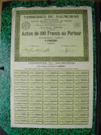 Action - Europe - France - Verreries Du Saumurois, Saumur  - Paris 1926 - Action De 100 Frs - Industrie