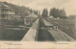 Norfolk Island Main Street Series 42 Kerry Sydney - Postcards