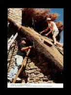 44 - SAINT-LYPHARD - Chaumiers De L´entreprise Le Goff Au Travail à Kerhouguet - 06/1997 - N° 116 - Chaumière - Saint-Lyphard
