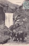 CPA 15 - Cantal @ ATTELAGE AUVERGNAT N° 2625 De MTIL @ Boeufs Salers Accouplés Devant La Cascade - Autres Communes