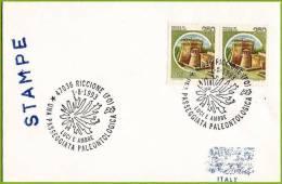 Italie / Italia (1993) Riccione : Paléontologie, Ambre / Paleontology, Amber / Passeggiata Paleontologica : Luci E Ambre - Geology