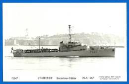 Marine Nationale - Escorteur Côtier L'INTREPIDE (PM03 111) - Warships