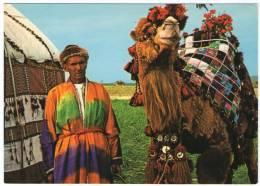 AFGHANISTAN-TORKMAN CAMEL - Afghanistan