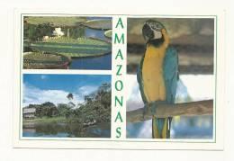 Cp, Colombie, Amazonas, MUlti-Vues, écrite - Colombia