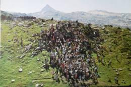 Tributo Tres Vacas Trois Vaches - Navarra (Pamplona)