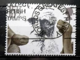 Great Britain - 1982 - Mi.nr.906 - Used - 100th Year Of Death Of Charles Darwin - Galapagos Giant Tortoise - 1952-.... (Elizabeth II)