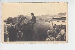 CIRCUS - ZIRCUS ALTHOFF In AHRWEILER - Circus