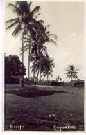 Recife Coqueiros Photo Carte - Recife