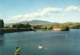 """PALIANO Frosinone """"La Selva"""" Parco Naturale - Altre Città"""