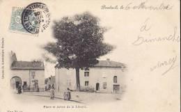 68 DOMBASLE SUR MEURTHE PLACE ET ARBRE DE LA LIBERTE CARTE 1906 TRES ANIMEES. - Francia