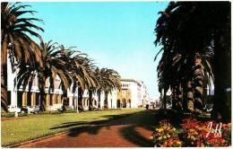 Rabat - Avenue Mohammed V Et La Poste - Rabat