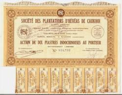 SOCIETE DES PLANTATIONS D'HEVEAS DE CAUKHOI - Asie