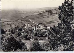 PERNAND-VERGELESSES--1962 --Vue Aérienne Sur Les Grands Crus,cpsm 10 X 15 N° 9  éd Combier--Belle Carte - France