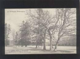 35 Forêt De Paimpont La Fontaine & L'étang Des Forges édit. Waron N° 1769 - Paimpont