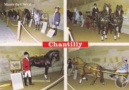 Cp , 60 , CHANTILLY , Le Musée Du Cheval , Multi-Vues - Chantilly