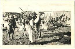 Djibouti - Retour En Brousse - & Camel - Djibouti