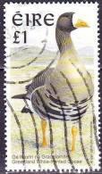 IRELAND EIRE 1997 Irish Inland Birds : Greenland White-fronted Goose  £1 ,-  Michel 980 XA - 1949-... Republiek Ierland