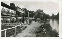 N°22811 -cpa Champigny -bords De La Marne - Champigny Sur Marne