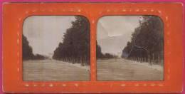 PARIS 068 AVENUE DES CHAMPS ELYSEES  (Transparente Réparée) - Photos Stéréoscopiques