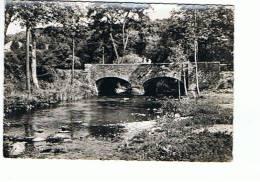 Daverdisse Le Pont Du Moulin Sur L'Almache - Daverdisse