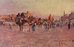CAIRE   Retour Du  '' Moulet  '' - Egypt