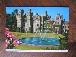 IRELAND EIRE IRLAND POSTCARD POSTKARTE ** Unused JOHN HINDE ASHFORD CASTLE On LOUGH CORRIB CONG Co. MAYO - Mayo