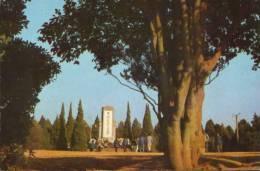 China-Postcard- Yuhuatai Martyr's Memorial Park - China